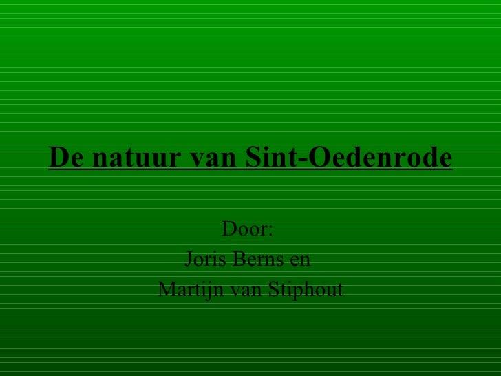 De Natuur Van Sint Oedenrode