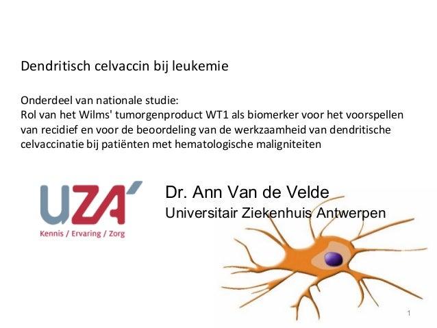Dendritisch celvaccin bij leukemieOnderdeel van nationale studie:Rol van het Wilms tumorgenproduct WT1 als biomerker voor ...