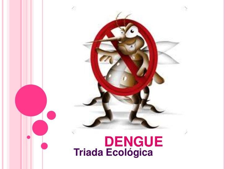 DENGUETriada Ecológica