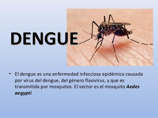 DENGUEDENGUE • El dengue es una enfermedad infecciosa epidémica causada por virus del dengue, del género flavivirus, y que...