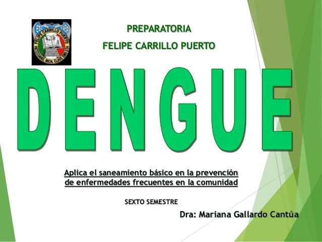 PREPARATORIA FELIPE CARRILLO PUERTO Dra: Mariana Gallardo Cantúa Aplica el saneamiento básico en la prevención de enfermed...