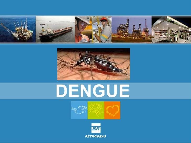 Dengue 2008
