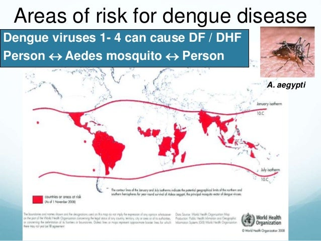 factors contributing to dengue fever Factors are contributing to the resurgence dengue fever such as very good and informative essay on dengue fever u know its very helpful for me for my.