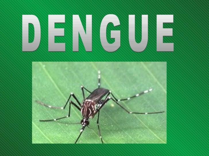 Es una grave enfermedad    viral transmitida por lapicadura del mosquito Aedes             aegypti.