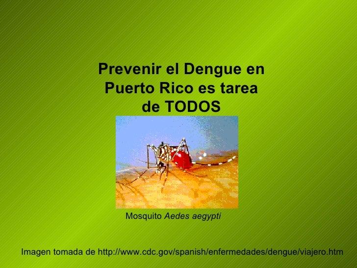 Prevenir el Dengue en Puerto Rico es tarea de TODOS Imagen tomada de http://www.cdc.gov/spanish/enfermedades/dengue/viajer...