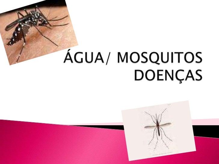Dengue e malaria
