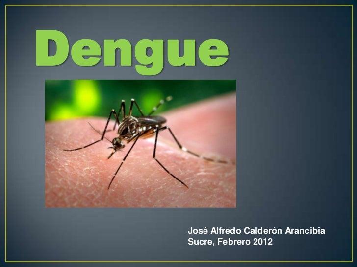 Dengue    José Alfredo Calderón Arancibia    Sucre, Febrero 2012