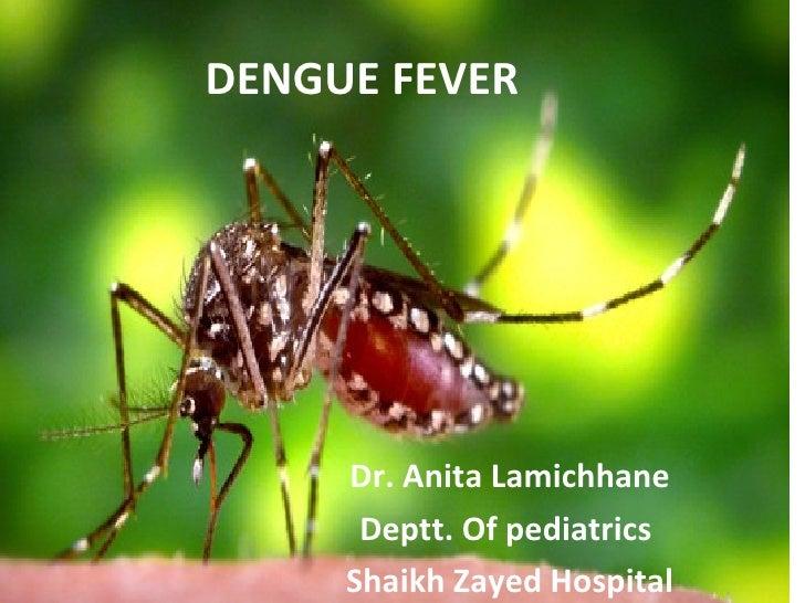 DENGUE FEVER Dr. Anita Lamichhane Deptt. Of pediatrics  Shaikh Zayed Hospital
