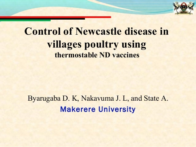 Control of Newcastle disease in    villages poultry using        thermostable ND vaccinesByarugaba D. K, Nakavuma J. L, an...