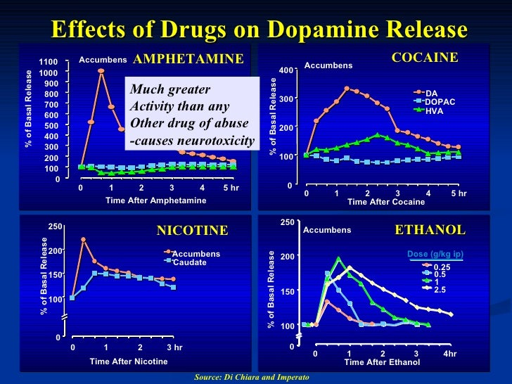 the effects of dopamine on the The role of neurotransmitter dopamine in movement and cognition.