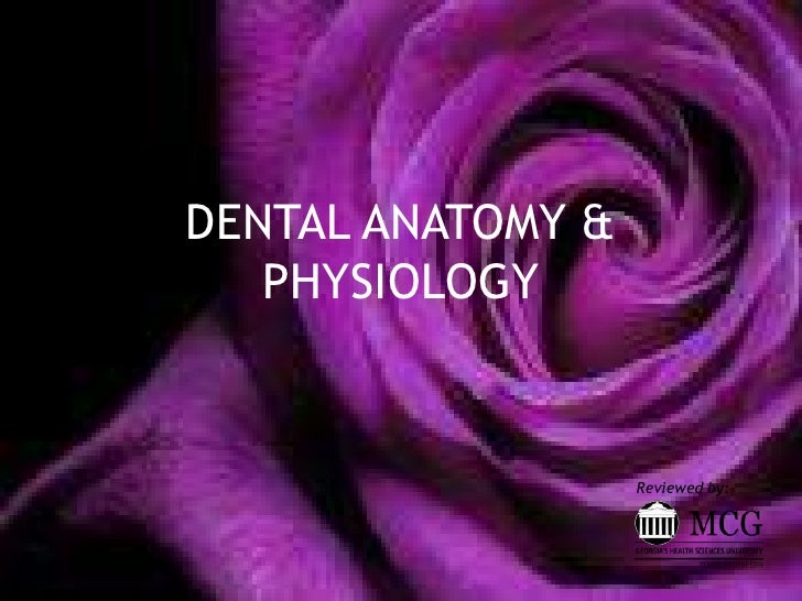 DENTAL ANATOMY & PHYSIOLOGY <br />Reviewed by:<br />