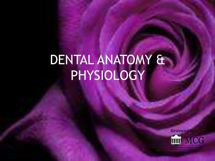 DENTAL ANATOMY &   PHYSIOLOGY                   Reviewed by:
