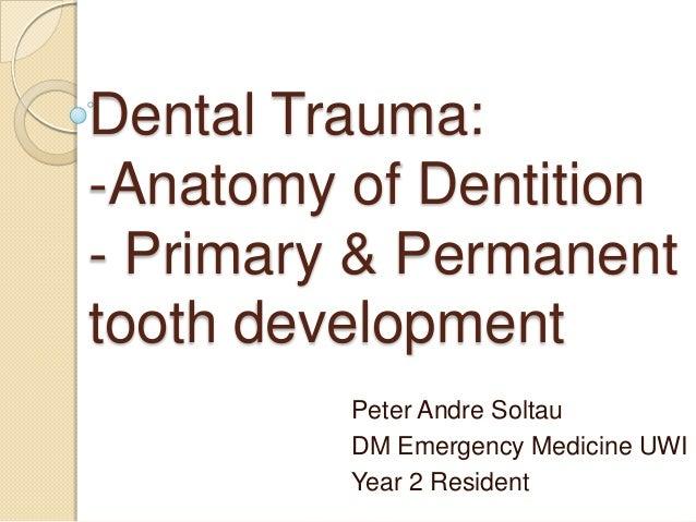 Dental Trauma: -Anatomy of Dentition - Primary & Permanent tooth development Peter Andre Soltau DM Emergency Medicine UWI ...