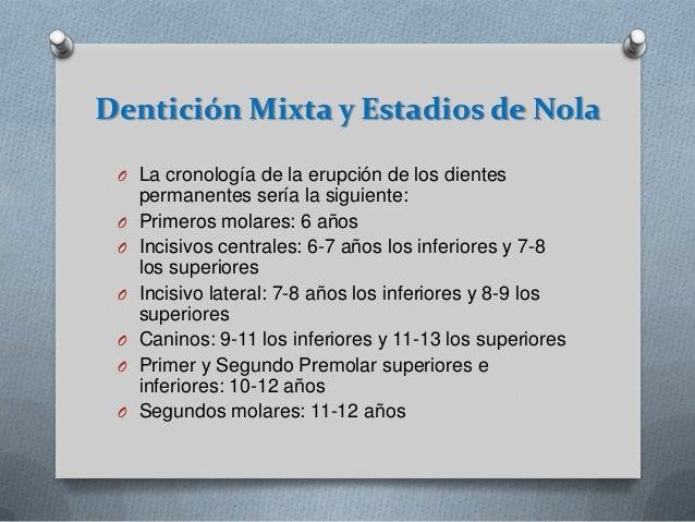Dentición Mixta y Estadios de Nola O La cronología de la erupción de los dientes O O O O O O  permanentes sería la siguien...