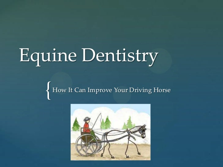 Dentistry - How It Can Improve Your Driving Horse