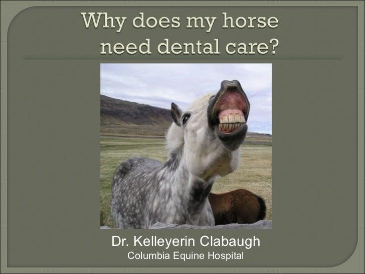 Dr. Kelleyerin Clabaugh  Columbia Equine Hospital