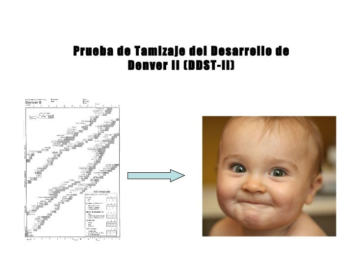 denver developmental screening test essay