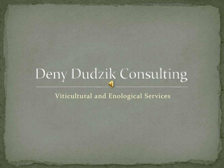 Deny Dudzik Consulting
