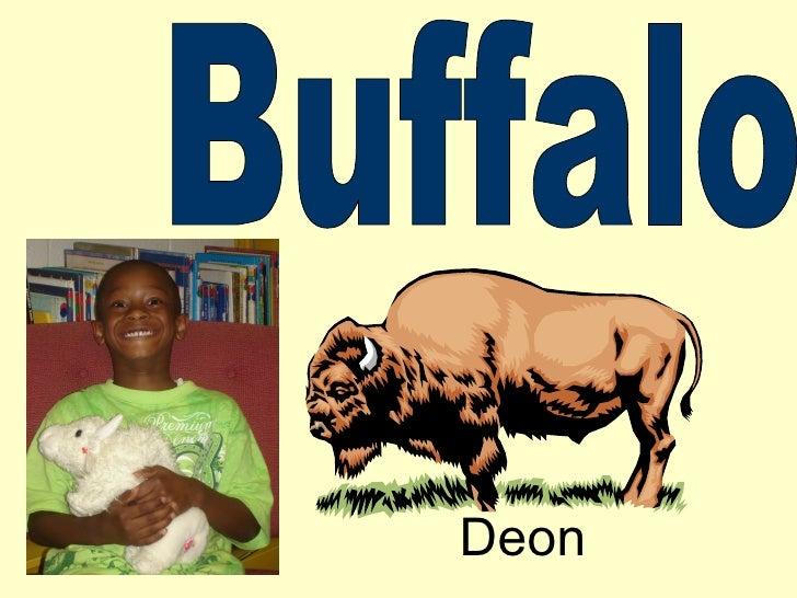 Buffalo Deon
