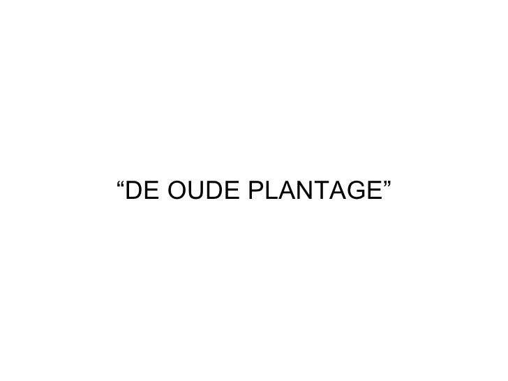 """"""" DE OUDE PLANTAGE"""""""