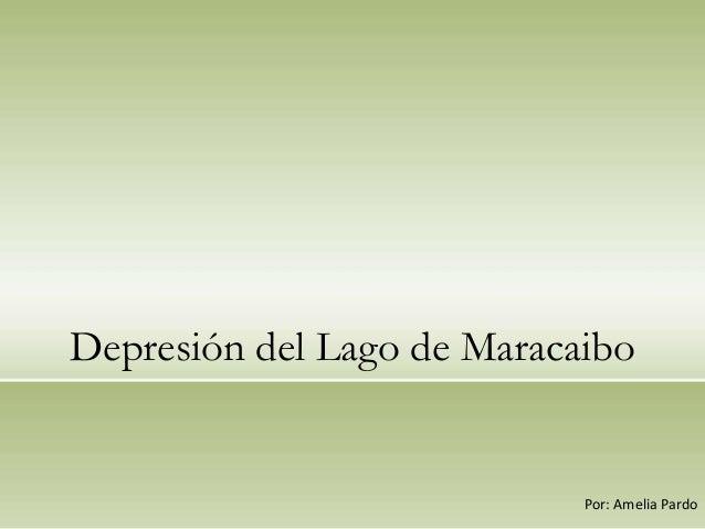 Depresión del Lago de Maracaibo                            Por: Amelia Pardo