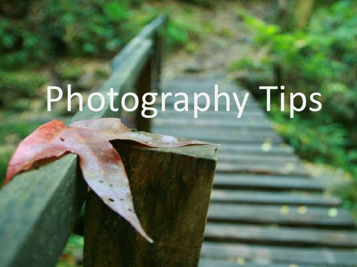 Photography Tips<br />-Depth of field-<br />