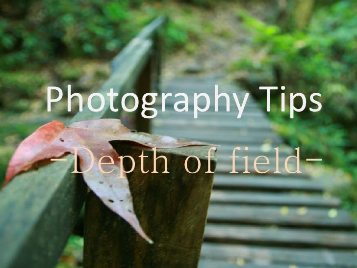 Photography Tips -Depth of field-