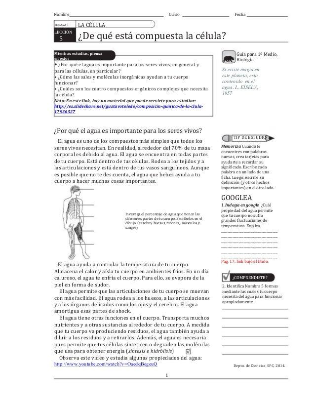 Nombre Unidad  1 LECCIÓN             5 Curso Fecha LA  CÉLULA   ¿De  qué  está  compuesta  la  ...