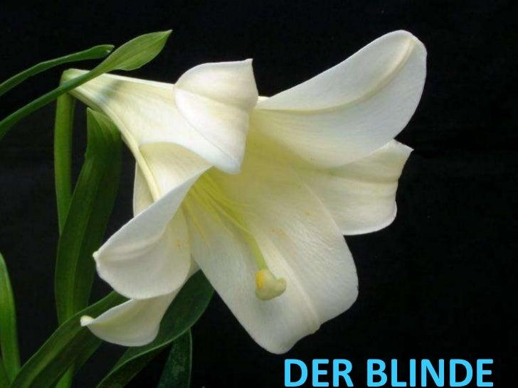 DER BLINDE