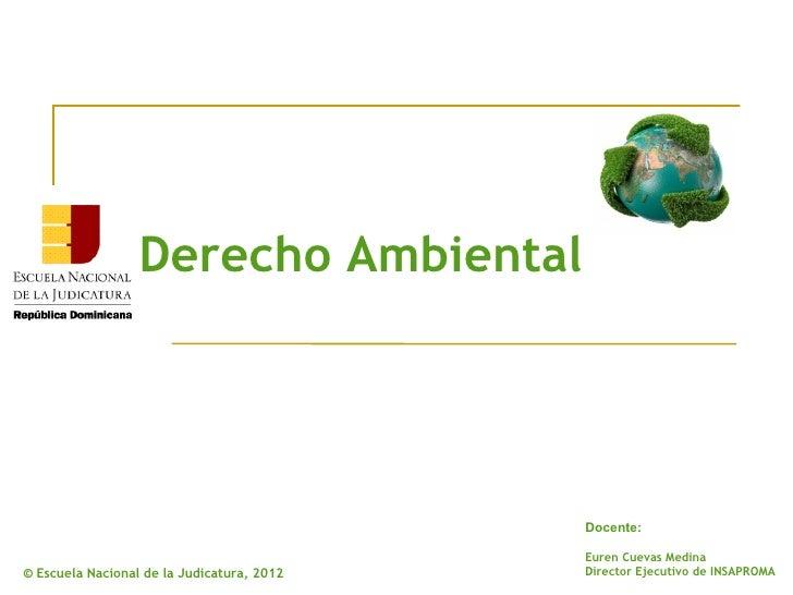 Derecho Ambiental                                            Docente:                                            Euren Cue...