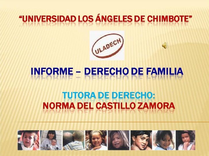 Derecho De Familia Norma Del Castillo