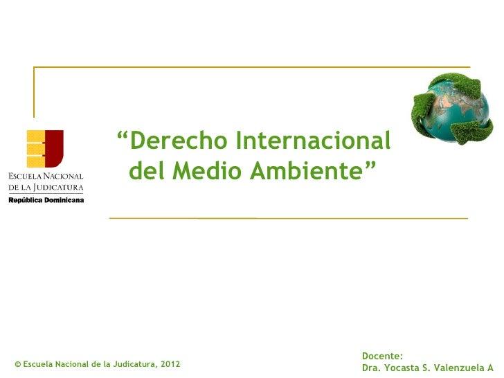 """""""Derecho Internacional                         del Medio Ambiente""""                                            Docente:© Es..."""