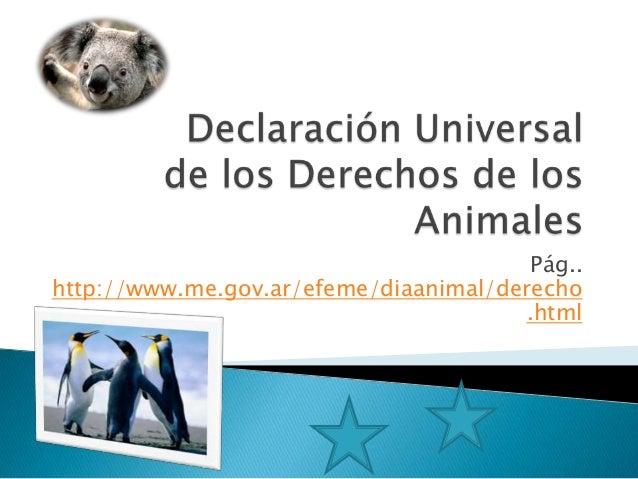 Derechos de los  animales   ytr