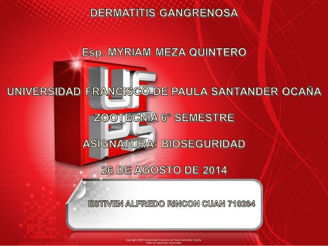 DDeerrmmaattiittiiss ggaannggrreennoossaa  Enfermedad aviar producida por:  •Clostridium septicum  •Clostridium perfringer...