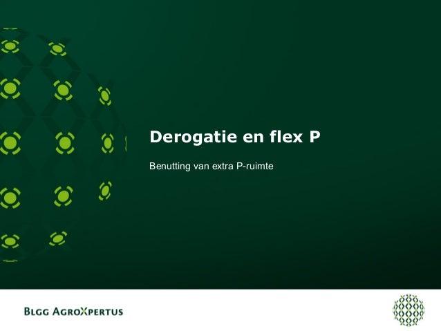 Derogatie en flex P Benutting van extra P-ruimte
