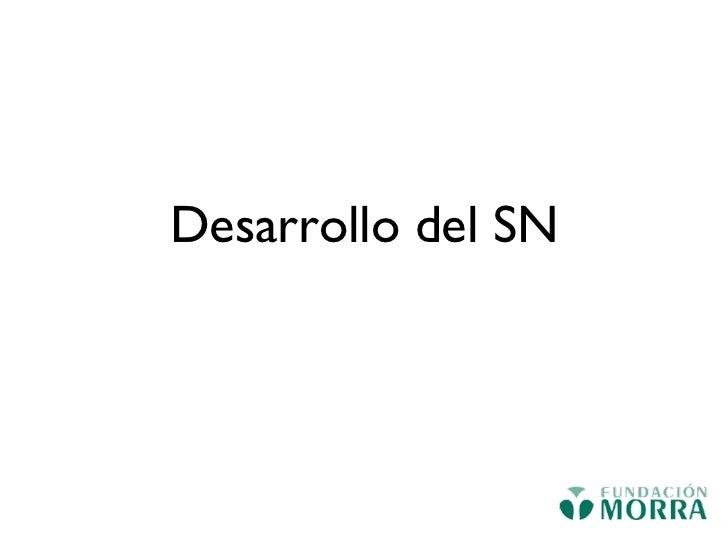 Desarrollo del SN