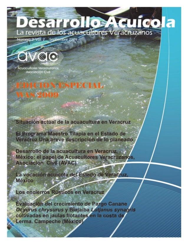 Un producto sano    es el pescado veracruzano                  rayanito2002@yahoo.com.mx  Subprograma de Sanidad          ...