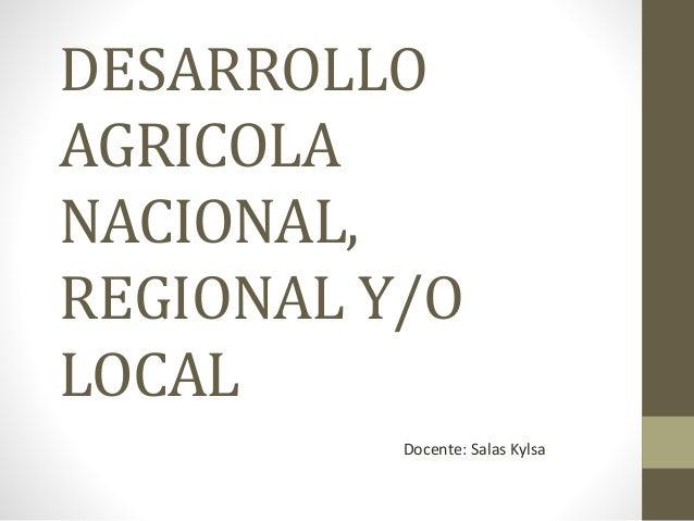 DESARROLLO AGRICOLA NACIONAL, REGIONAL Y/O LOCAL Docente: Salas Kylsa