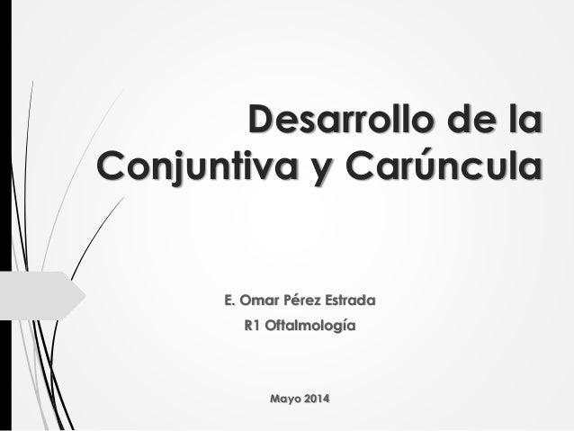 Desarrollo de la Conjuntiva y Carúncula E. Omar Pérez Estrada R1 Oftalmología Mayo 2014