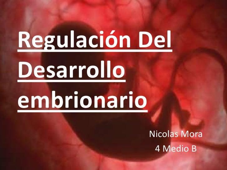 Regulación DelDesarrolloembrionario           Nicolas Mora            4 Medio B