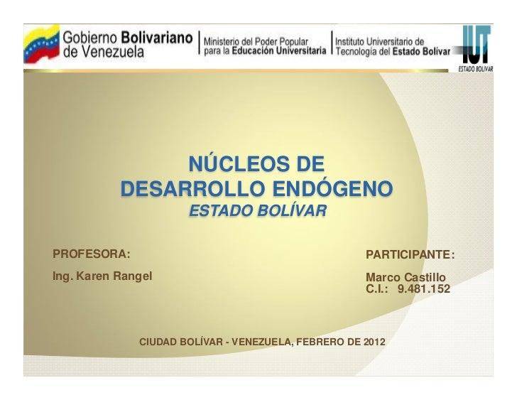 NÚCLEOS DE           DESARROLLO ENDÓGENO                      ESTADO BOLÍVARPROFESORA:                                    ...