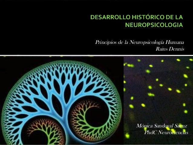 Principios de la Neuropsicología Humana                            Rains Dennis                  Mónica Sandoval Saenz    ...