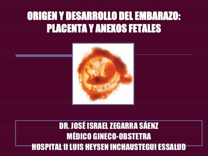 ORIGEN Y DESARROLLO DEL EMBARAZO:    PLACENTA Y ANEXOS FETALES       DR. JOSÉ ISRAEL ZEGARRA SÁENZ          MÉDICO GINECO-...
