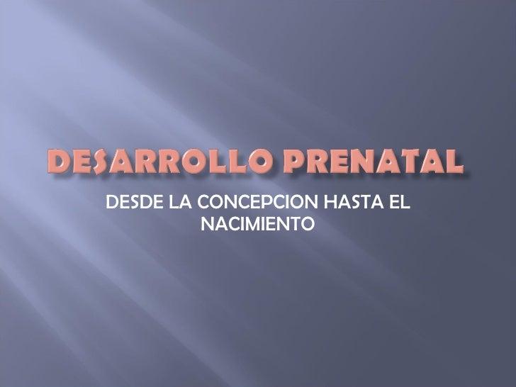 Desarrollo Prenatal Real