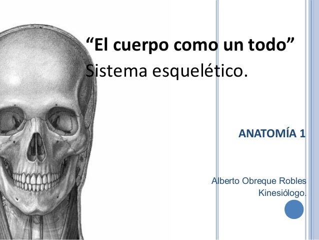"""ANATOMÍA 1 """"El cuerpo como un todo"""" Sistema esquelético. Alberto Obreque Robles Kinesiólogo."""