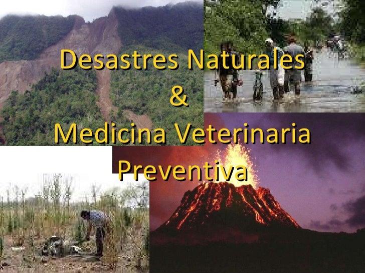Desastres Naturales &  Medicina Veterinaria Preventiva