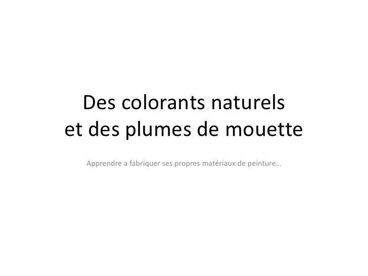 Des colorantsnaturelset des plumes de mouette<br />Apprendre a fabriquersespropresmatériaux de peinture…<br />