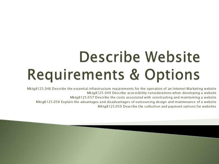 Describe website requirements & options