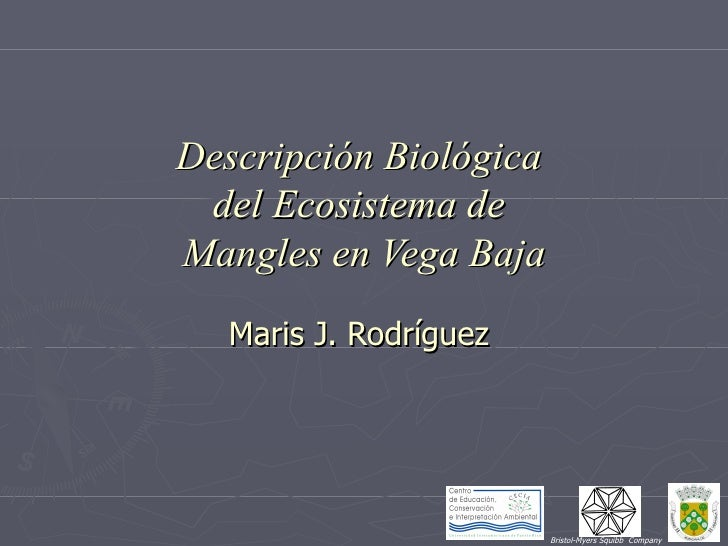 Descripción Biológica  del Ecosistema de  Mangles en Vega Baja Maris J. Rodríguez  Bristol-Myers Squibb  Company