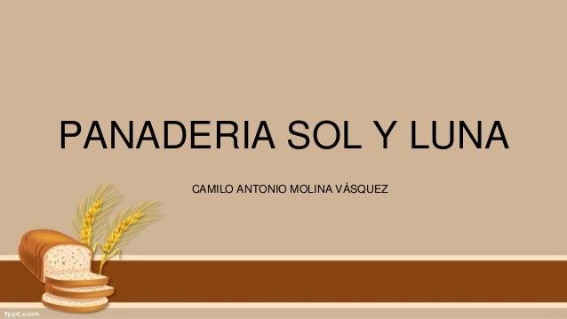PANADERIA SOL Y LUNA CAMILO ANTONIO MOLINA VÁSQUEZ
